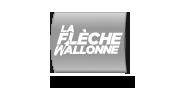 De Waalse Pijl (La Flèche Wallonne)