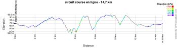 Le profil du circuit de la course en ligne des Championnats de France 2015