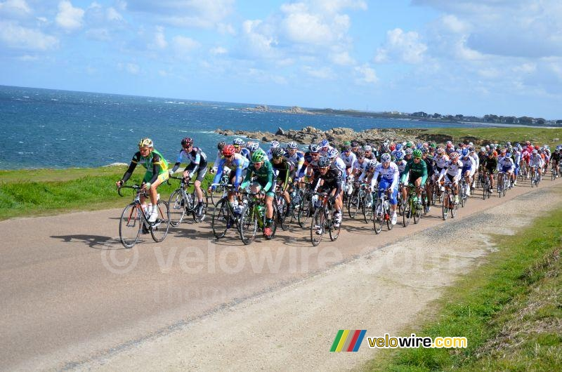 The peloton along the coastline