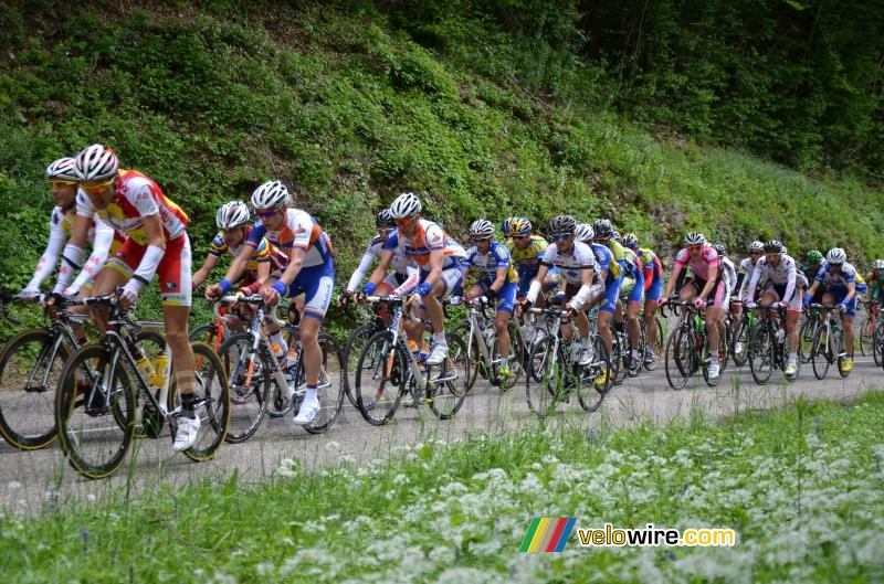 The peloton on the first climb of the Côte de l'Etang de Ry (4)