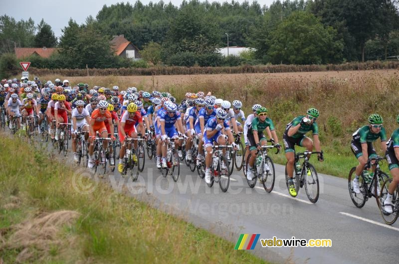 The peloton close to Enguinegatte (2)