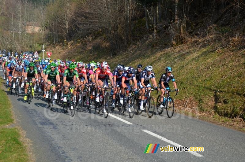 The peloton at the foot of the col du Champ Juin