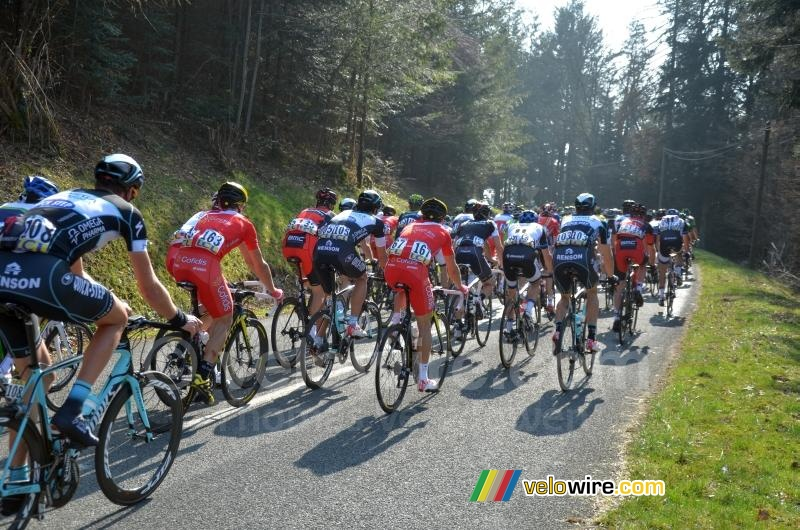 The peloton at the foot of the col du Champ Juin (3)