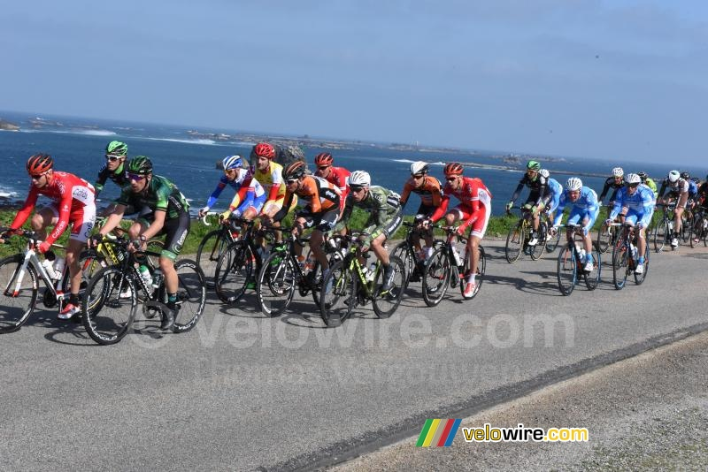 The peloton at the sea side (2)
