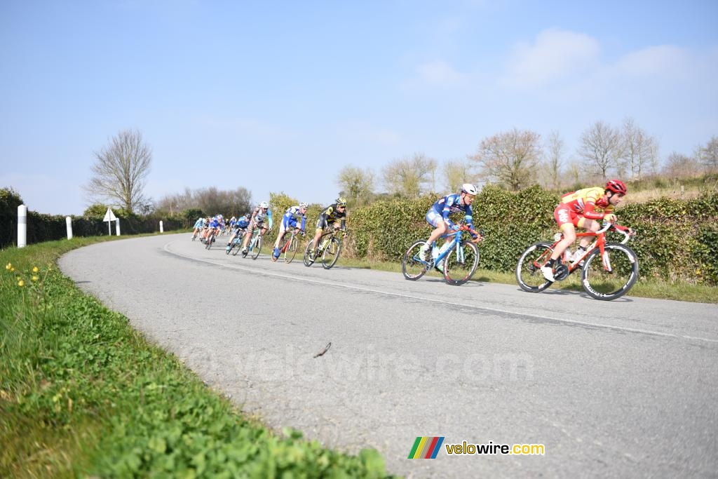 The peloton in the nature