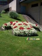 Saint-Jean-de-Maurienne: a flower polka-dot jersey