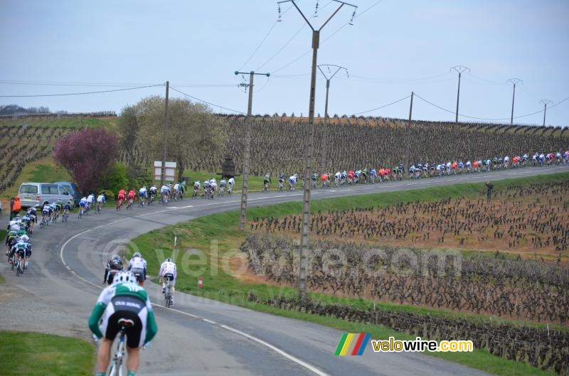 A long-stretched peloton